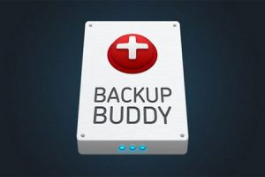BackupBuddy v8.2.2.4 - Back up, restore and move WordPress Download Free