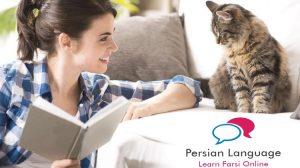 Persian (Farsi) Language: Speak, Read, and Write in 3 Hours!