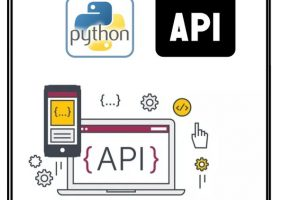 Rest API Testing using Python Udemy Courses Download Free