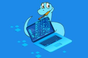 Python Programming for Beginners - Every Code line Explained Course Free