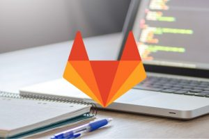 The Gitlab and Tortoise Git Crash Course - Learn To Code